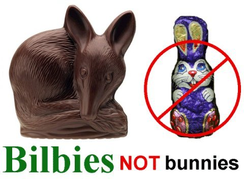 Bilbies_not_bunnies